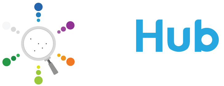 BIHub - Visual BI Solutions